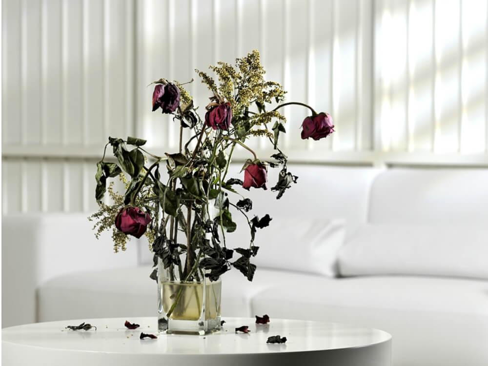 Thay đổi phong thủy trừ vận đen trong nhà